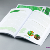 Wnętrze broszury klejonej wydrukowane na kredzie matowej 130 g/m2, zadruk CMYK.