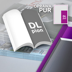 DL pion